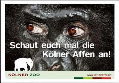 meldung-award-zoo